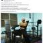 ม้านอนเล่นบาร์เบล MAXXFiT รุ่น WB203 แบบมีเสาเคเบิล thumbnail 21