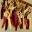 ข้าวโพด 3 สี เมจิกแมนน่า - Magic Manna Corn thumbnail 2