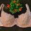ชุดชั้นใน Weinna Size E75 thumbnail 1