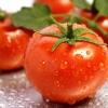 มะเขือเทศ ( Tomato )มีวิตามินเอราว 1 ใน 3 ของวิตามินเอที่ร่างกายต้องการในหนึ่งวันมีสารที่สามารถยับยั้งการเจริญเติบโตของเชื้อรา ดังนั้นจึงใช้เป็นยา รักษาโรคที่เกี่ยวกับปากที่เกิดจากเชื้อราได้สามารถลดการเกิดมะเร็งลำไส้ และมะเร็งต่อมลูกหมากได้