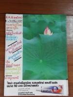 ฟ้าเมืองไทย ฉบับที่ 928
