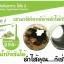 Hoso i โฮโซอิ ดีท็อกซ์ล้างสารพิษในร่างกาย - charm for you ขายส่งเครื่องสำอาง ขายส่งอาหารเสริม ขายส่งสินค้ากระแสความงาม ของแท้ ปลีก-ส่ง thumbnail 4