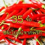 35 ข้อ ประโยชน์จากพริก
