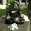 กระเป๋าถือ/สะพายน่ารักมุ้งมิ้ง thumbnail 4