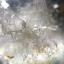 เม็ดโต แก้วสามกษัตริย์ เข้าแก้วลอย+กาบ+เข้าแร่ ขนาด3.8*2.9 cm ทำกำไลข้อมือเม็ดเดียวหรือสะสม thumbnail 5