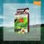 โลแลน เนเจอร์ โค้ด คัลเลอร์ แชมพู ปราศจากแอมโมเนีย N4 น้ำตาลอ่อนประกายมะฮอกกานี thumbnail 1