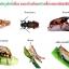 หัวเชื้อรา เมธาไรเซียม บริสุทธิ์ สำหรับขยายเชื้อ กำจัดแมลง thumbnail 11