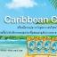 Little Trees กลิ่น Caribbean Colada thumbnail 3