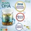 Ausway smart algal DHA เสริมสร้างสมองดีดี ให้ลูกคุณ ฉลาด สมวัย Ausway smart algal DHA เสริมสร้างสมอง ให้ลุกรักฉลาด สมวัย ขนาด 90 เม็ด ออสเตรเลีย