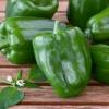 Capsicum Green - พริกใหญ่เขียว