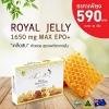 (กล่อง 30 เม็ด) Angel's Secret Maxi royal jelly 1,650mg. นมผึ้งสกัดเย็น ผสมน้ำมันอิฟนิ่ง พริมโรส นมผึ้งชนิดซอฟเจล สูตรพิเศษ เข้มข้นที่สสุด ดูดซึมดีที่สุด ทานแล้วไม่อ้วน ผิวสวย สุขภาพดี จากออสเตรเลีย