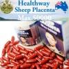 (ขายดี) Healthway Sheep Placenta MAX 50000 mg. บรรจุ 100 เม็ด เข้มข้นที่สุด ที่สุดแหงความเนียนใน เด้ง จากออสเตรเลีย
