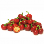 Cherry Bomb Pepper - พริกเชอรี่บอมพ์