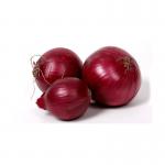 Onion Dark Red - หอมแดงสเปน