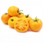 Tomato Oblate Yellow