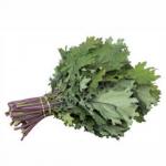 Red Russian Kale (คะน้าเคล)
