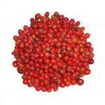 Tepin Pepper - พริกเทพิน