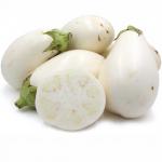 Brinjal White - มะเขือเปราะขาว