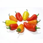 Santa fe grande pepper - พริกซานตาเฟต์