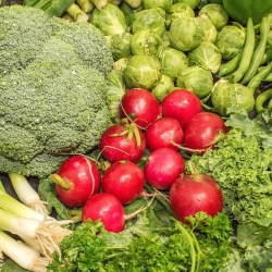 เสริมสารอาหารอย่างไร ต้านความชราได้อย่างมีประสิทธิภาพ