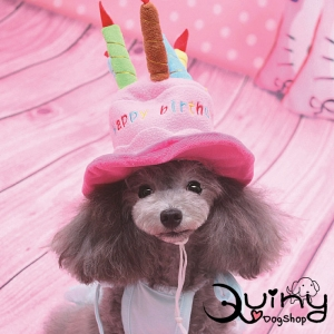 หมวกสุนัข เค้กวันเกิด