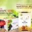 (เซ็ททดลอง 1 เดือน) นมผึ้งแองเจิลซีเครท 6% 1,650 mg. EPO Plus 30 เม็ด + สารสกัดเมล็ดองุ่นแองเจิลซีเครท 60,000 mg.30 เม็ด ผิวขาว ลดริ้วรอย และสุขภาพดี thumbnail 2