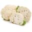 Cauliflower - กะหล่ำดอกขาวหิมะ