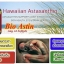 Bioastin Hawaiian Astaxanthin 4 mg 60 Softgels แอสตาแซนธิน + Puritan Lycopene 40 mg/60 Softgel สารสกัดจากมะเขือเทศเข้มข้น เซ็ทผิวขาวอมชมพู ผิวอ่อนเยาว์ ป้องกันแสงแดด จาก usa thumbnail 6