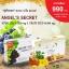 (โปรฯ ฟรี!!สบู่นมผึ้งรอยัลบี 1 ก้อน) สารสกัดเม็ดองุ่นแองเจิลซีเครท 60,000 mg. 1 กล่อง 30 เม็ด + นมผึ้งแองเจิลซีเครท 1 กล่อง 30 เม็ด thumbnail 3