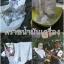 ผงซักฟอก แนนซี่ ออกซี่ทเวลฟ์ 10 ถุง thumbnail 8