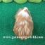 SM4522 ซิลกี้/ผู้/ขนแครี่ซาติน/โครงสร้างดีมากขนแน่น/ขนยาวเรียบหรู thumbnail 5