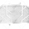 การ์ดหม้อน้ำ LEON สีเงิน FOR HONDA CB650F (2017)