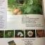 ดอกไม้ และประวัติไม้ดอกเมืองไทย หนังสือชุด ธรรมชาติศึกษา วิชัย อภัยสุวรรณ. ภาพและเรื่อง. ประวิทย์ เจริญพงศ์ บรรณาธิการ thumbnail 6