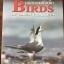 นกแหลมผักเบี้ย. Birds of LAEM PHAK BIA. ผู้เขียน Philip D.Round และ วิเชียร คงทอง thumbnail 2
