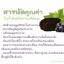 Grape Seed Extract สารสกัดจากเมล็ดองุ่น อนุภาพสูงกว่าวิตามินซี 20 เท่า และสูงกว่าวิตามินอีกว่า 50 เท่า thumbnail 3