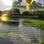 สวนประวัติศาสตร์ พลเอก เปรม ติณสูลานนท์ สงขลา. General Prem Tinsulanonda Historical Park. Songkhla thumbnail 4
