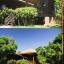 สวนประวัติศาสตร์ พลเอก เปรม ติณสูลานนท์ สงขลา. General Prem Tinsulanonda Historical Park. Songkhla thumbnail 28