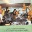 ชีวประวัติพระคุณเจ้า หลวงปู่ชอบ ฐานสโม วัดป่าโคกทน อำเภอวังสะพุง จังหวัดเลย. thumbnail 16