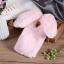 เคสซัมซุง a8 2018 เคสนิ่มขนกระต่ายฟูน่ารักมุ้งมิ้ง thumbnail 7