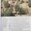 ปราสาท(เขา)พระวิหาร. ผู้เขียน ดร.ธิดา สาระยา เมืองโบราณ thumbnail 20