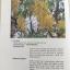 MEDICINAL PLANTS GARDEN IN PHUTTHAMONTHON. รวมรวมต้นไม้ดอก-ไม้ประดับในพุทธมณฑล จัดพิมพ์เนื่องในวโรกาสที่พระบาทสมเด็จพระเจ้าอยู่หัว ภูมิพลอดุลยเดช ครองราชย์ครบ 50 ปี thumbnail 42
