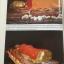 ตามรอยบาทพระพุทธองค์ พร้อมภาพถ่ายพุทธสถานที่สำคัญ ถ่ายภาพ และเรียบเรียงโดย สันติ เตชอัครกุล thumbnail 43
