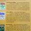 เตรียมตัวไปอ่านข่าว English Through Newspapers. ผู้เขียน เศรษฐวิทย์ thumbnail 2