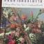 ถนนสายดอกไม้งาม ปรัชญาชีวิต โดย จิตรา ก่อนันทเกียรติ thumbnail 2