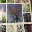 ดอกไม้ และประวัติไม้ดอกเมืองไทย หนังสือชุด ธรรมชาติศึกษา วิชัย อภัยสุวรรณ. ภาพและเรื่อง. ประวิทย์ เจริญพงศ์ บรรณาธิการ thumbnail 15
