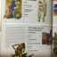 Essential Visual History of The BIBLE by NATIONAL GEOGRAPHIC thumbnail 19