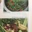 """พริก คู่ครัวไทย.ปลูกง่าย รายได้งาม. ครบครันรอบด้าน ทั้งเทคนิคการปลูกและการแปรรูป """"พริก"""" สุดยอดพืชเศรษฐกิจไทย thumbnail 15"""