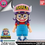 FIGURE-RISE MECHANICS Dr.SLUM ARALE