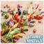 แพคเกจใหม่ล่าสุด Kirkland Daily Multi Vitamins & Minerals วิตามินรวม 500 เม็ด Family size ขวดใหญ่ สุดคุ้มค่ะ thumbnail 4