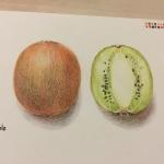 ทดลองใช้สี Raffine กับหนังสือสอนระบายสี